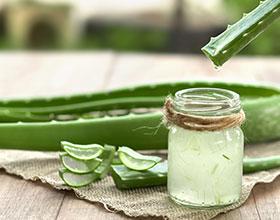 7 מצבים בהם צמח האלוורה עשוי לשדרג לכם את שגרת הטיפוח