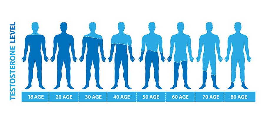 גיל המעבר הגברי: